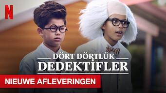Dört Dörtlük Dedektifler (2020)
